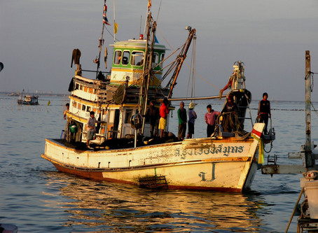 Slavery in our seafood