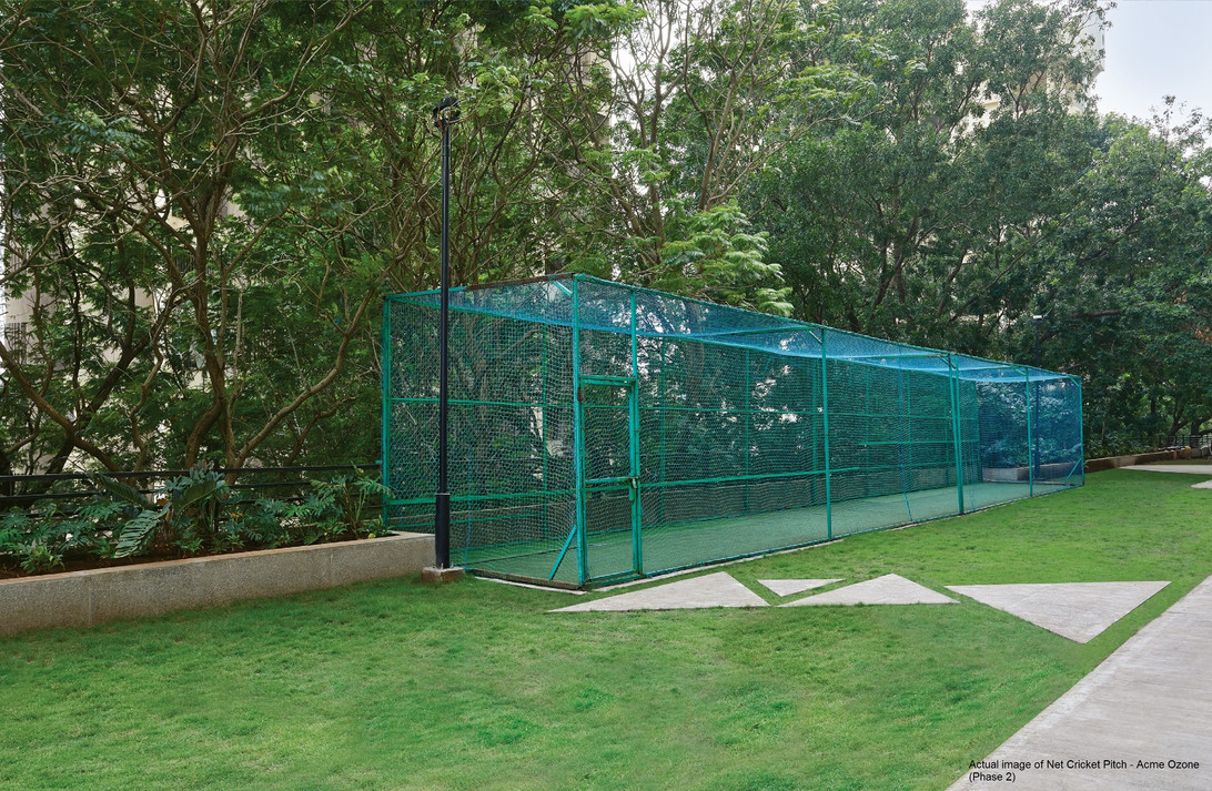Net Cricket Pitch