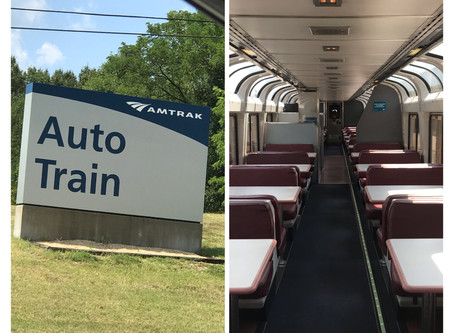 Auto Train Experience