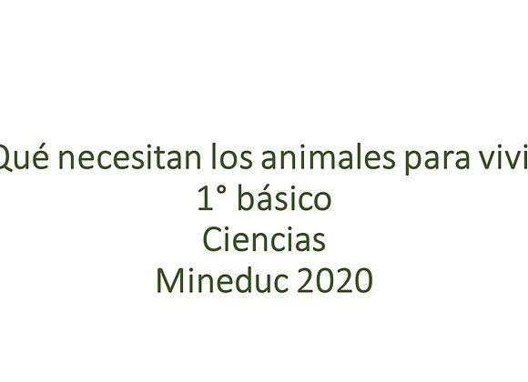 ¿Qué necesitan los animales para vivir?