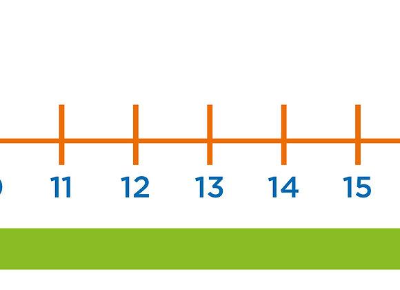 Recta numérica alumno
