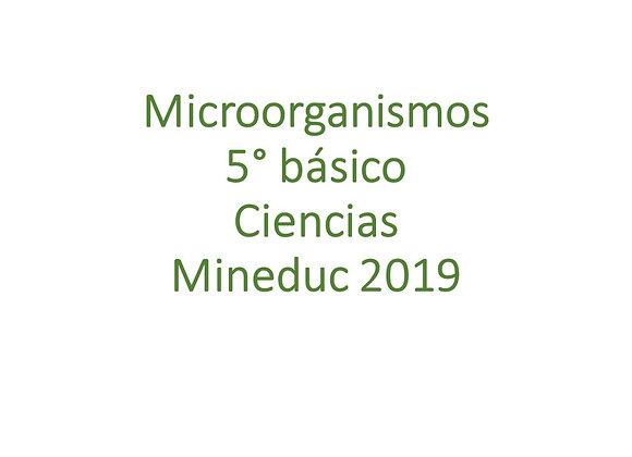 Microorganismos y virus