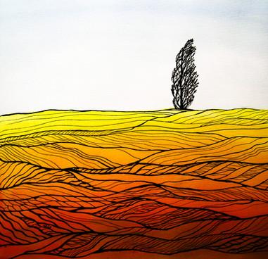 TOPOL by Miren Hayek