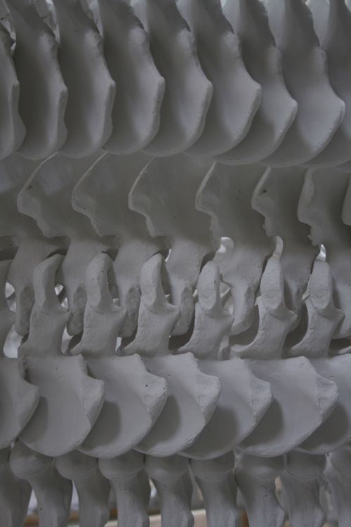 Bone pattern 1 web.jpg