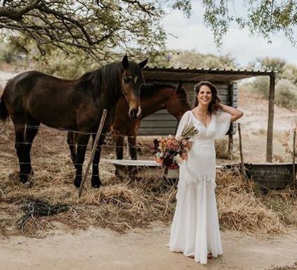 photoshoot horses