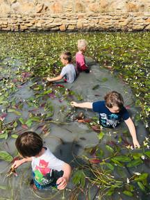 kids waterblommetjies