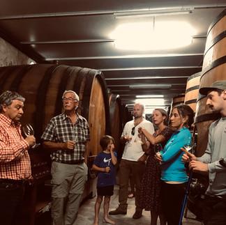barrel cellar wine tastings