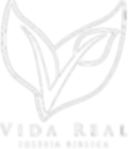 Vida Real Logo - white-outline_text.png