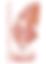 BCA-logo-vector (1).png