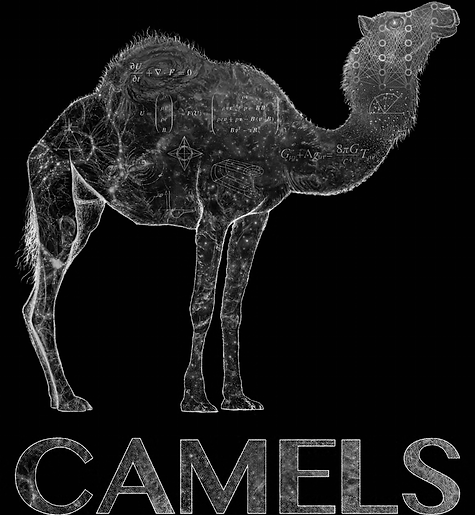 CAMEL_reconstructed.png