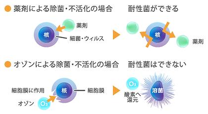 オゾンによる除菌・不活化.png