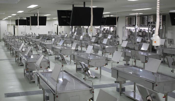 解剖実習室全体