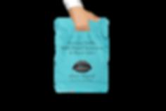 ubuzz bag tranparent.png