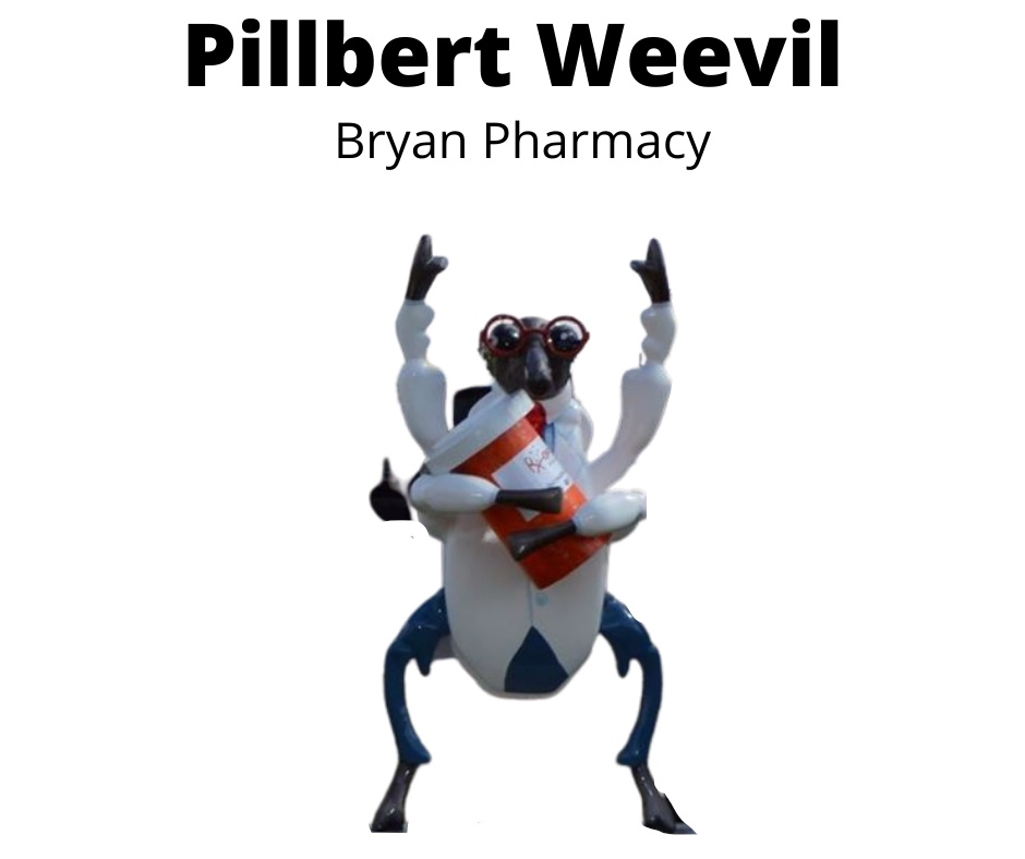 Pillbert Weevil