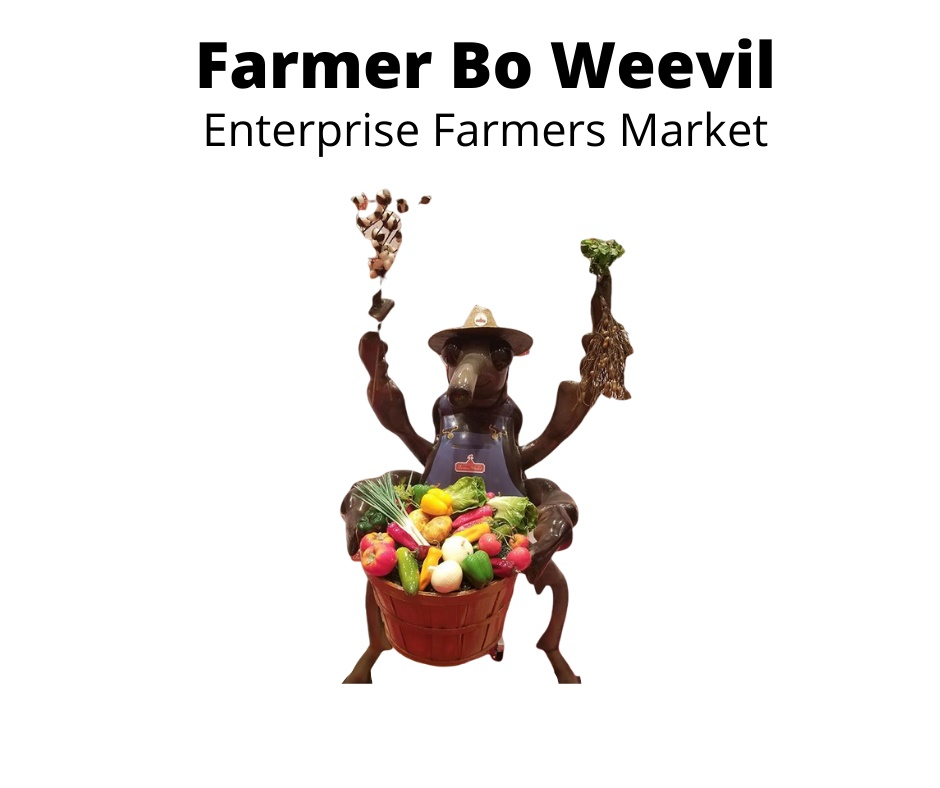Farmer Bo Weevil