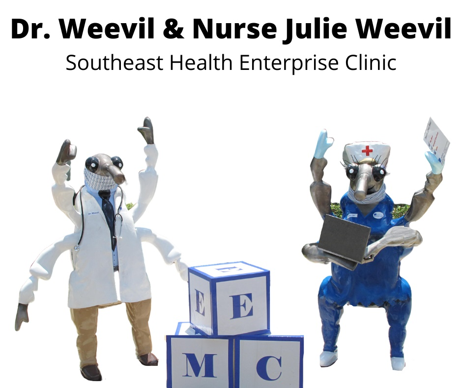 Dr. Weevil & Nurse Julie Weevi