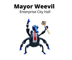 Mayor Weevil
