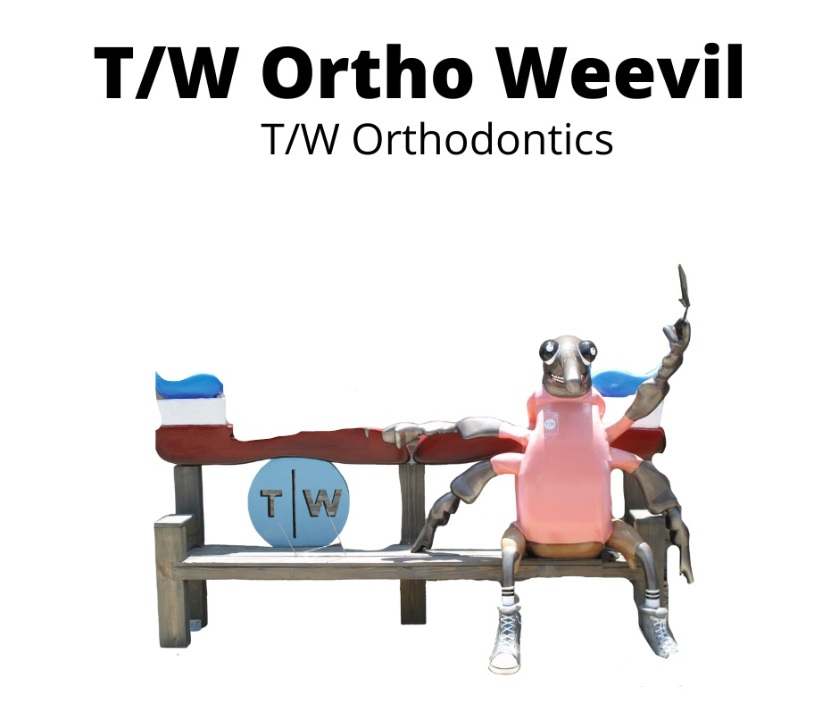 T_W Ortho Weevi