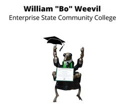 William Bo_ Weevil