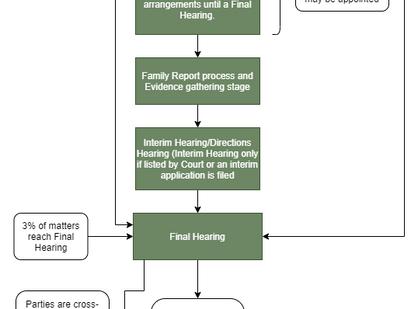Parenting Proceedings Flowchart