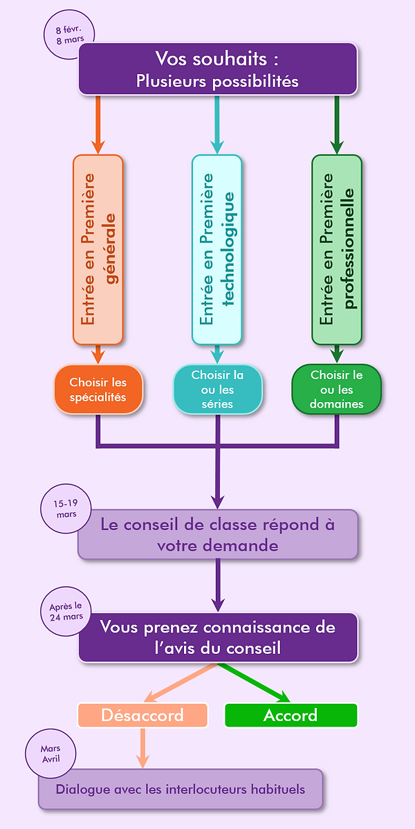 Phase 1 complète.png