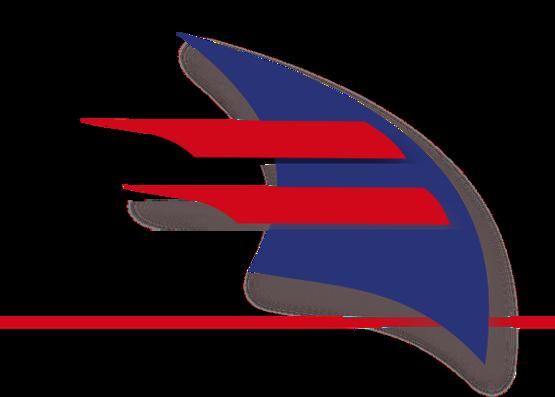 logo Section anglais.png