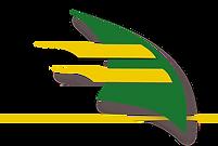 Logo STMG.png