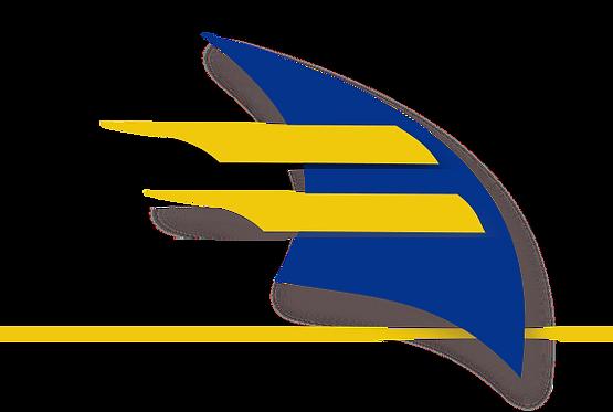 Logo ERasmus.png