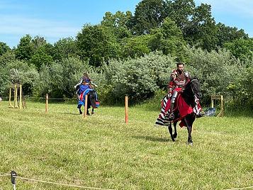 equus nobilis.jpg
