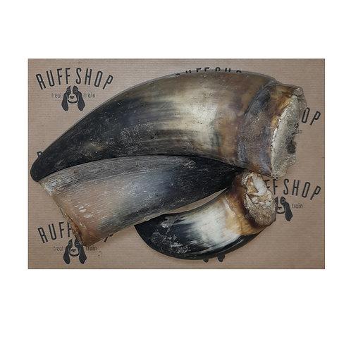 Beef Horn