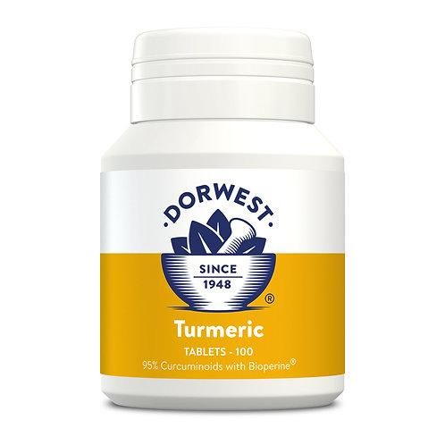 Turmeric - 100 Tablets