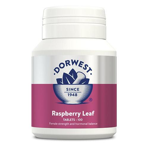 Raspberry Leaf - 100 Tablets