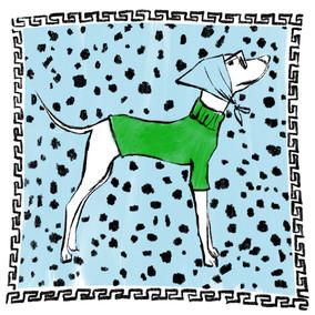 Dalmatian Scarf