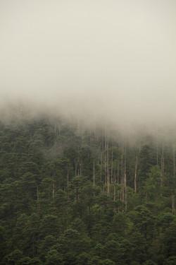 BhutanPoster.jpg