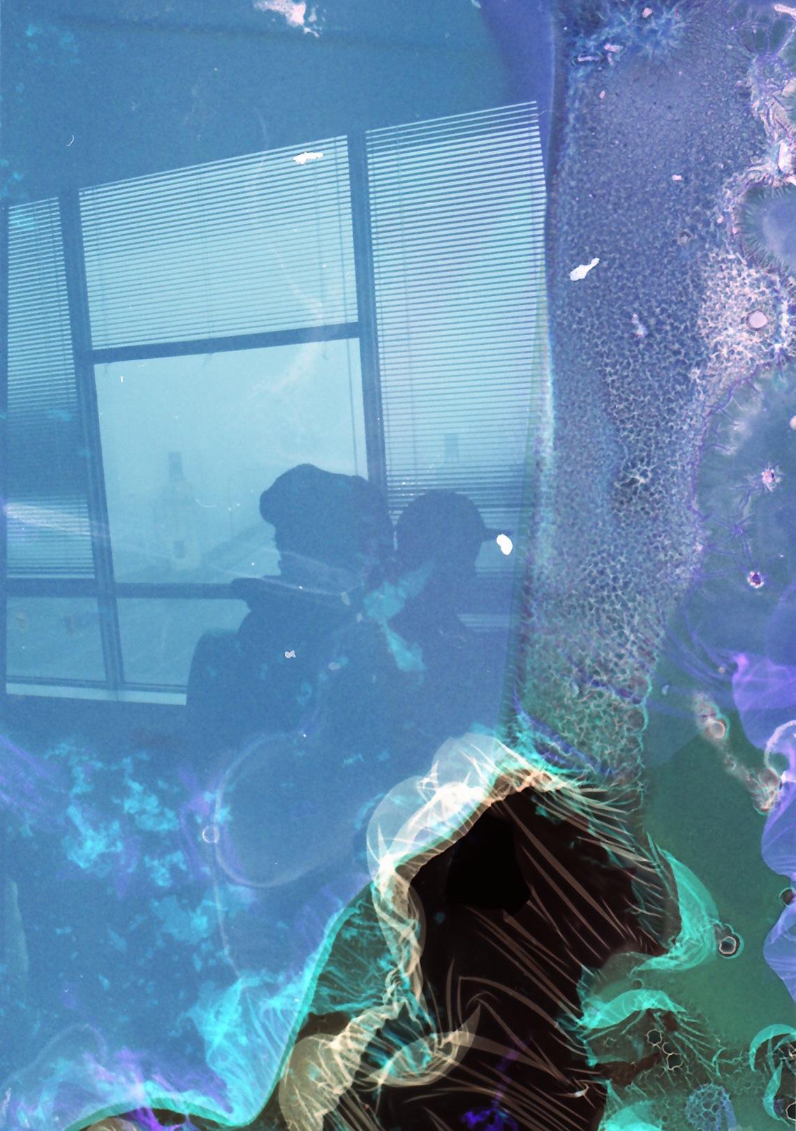 acid negatvie_0015.jpg