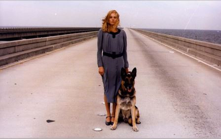 A mysterious blind woman and her dog on a highway in the middle of the water