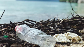 Act on Plastic in the Mediterranean