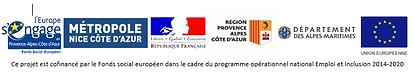 logos-FSE.PNG