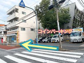 image_6483441 (18).JPG