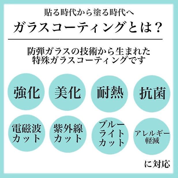 image_6483441 (12).JPG