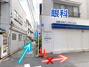 image_6483441 (21).JPG