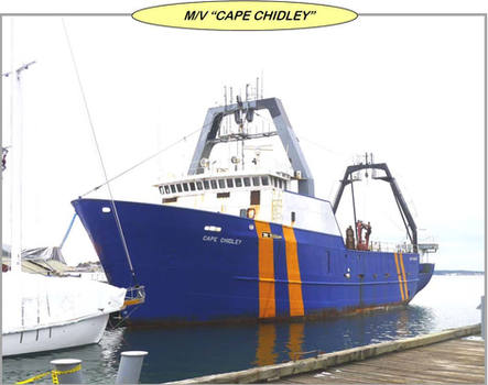 Cape Chidley