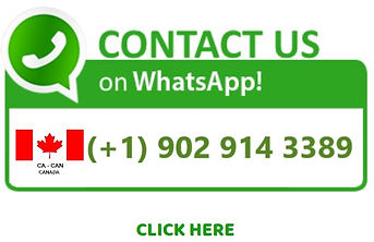 whatsapp icon on website.jpg