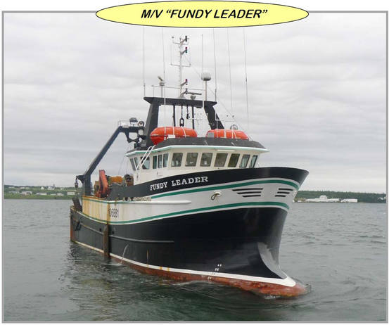 Fundy Leader