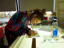 Liesbeth Boon Cursus brandschilderen