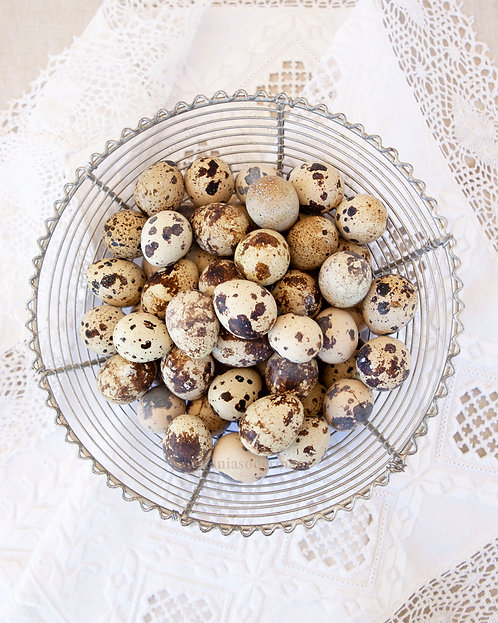 Quail Eggs with Lace