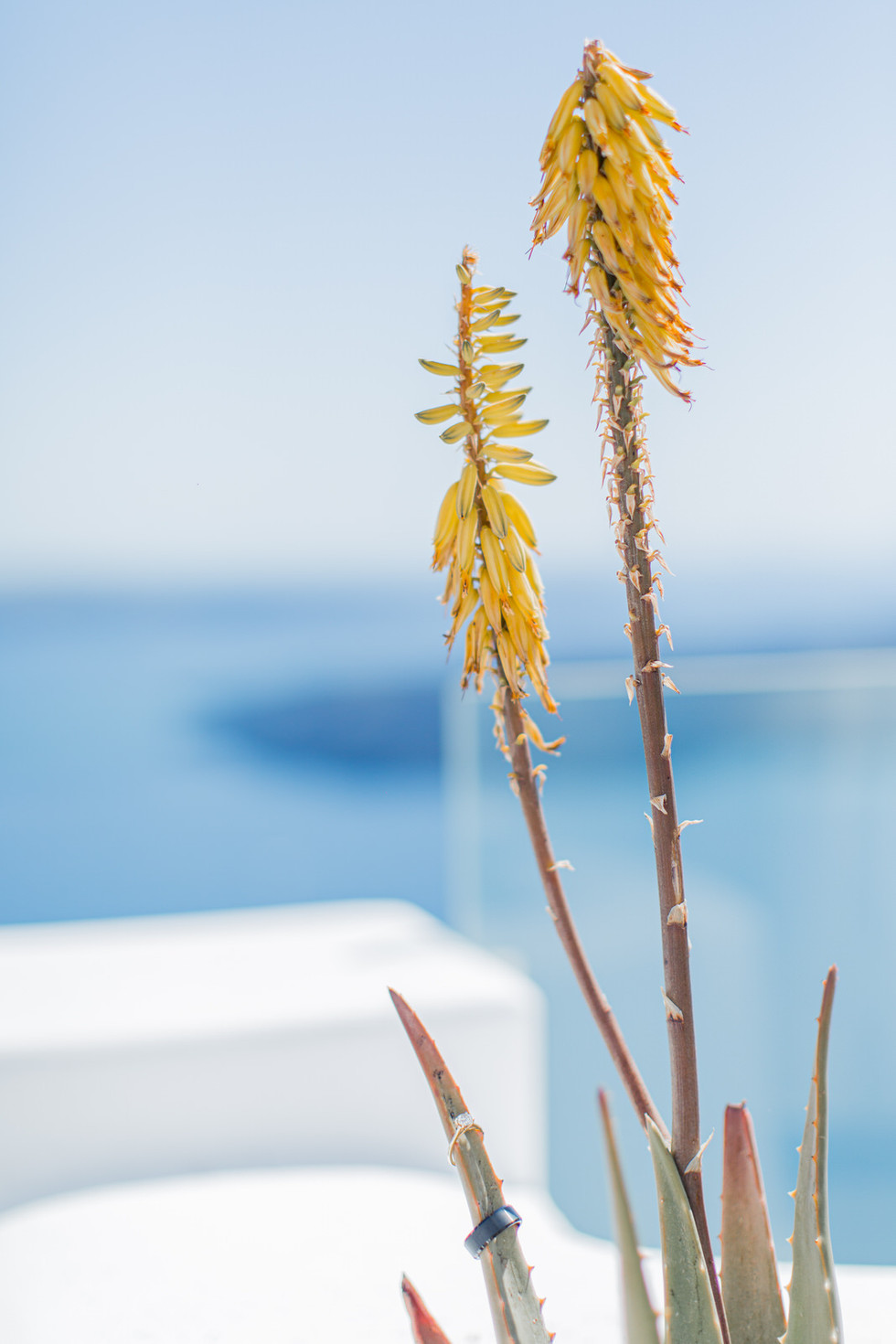 Santorini-Elopement- wedding-113.jpg