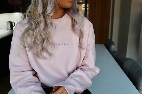 NAUGHTYBIRDS - Pastel Pink Oversized Sweatshirt
