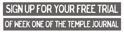 free trial pdf of The Temple Jornal workout and planner