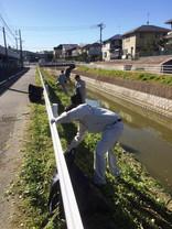 河川清掃活動